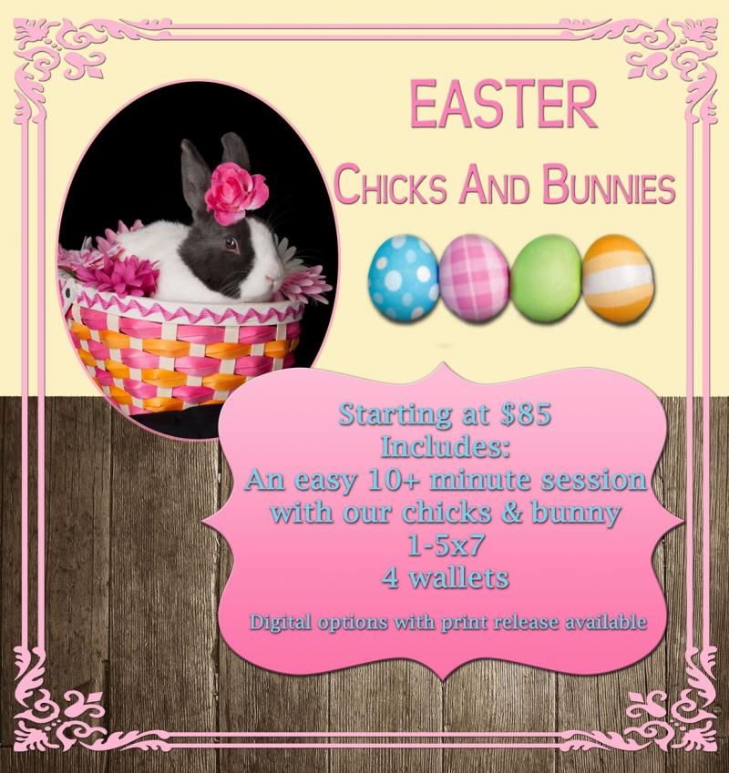 Easter Chicks & Bunny Portrait packages